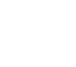 home inspector content